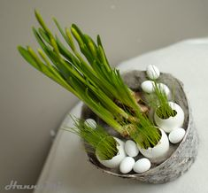 Hanna Mi: Yllättikö pääsiäinen? DIY vinkkejä nopeasti valmis... Bouquet, Happy Easter, Garden Plants, Beautiful Flowers, The Good Place, Activities For Kids, Diy Home Decor, Diy And Crafts, Projects To Try