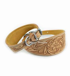 Luxury Hand Carved Natural Leather Whippet Greyhound Lurcher Dog Collar Padded | eBay