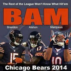 2014 Bears
