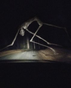 t take the back country road home. Scary Photos, Creepy Images, Creepy Pictures, Dark Creatures, Mythical Creatures, Images Terrifiantes, Arte Obscura, Monster Art, Creepy Monster