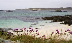 Away from it all: the isle of Coll in the Inner Hebrides. Photograph: Murdo Macleod for the Observer Travel Goals, Travel Hacks, Places To Travel, Places To Visit, West Coast Scotland, Outer Hebrides, Scottish Islands, Norway Travel, Packing List For Travel