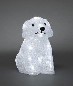 A dog is not just for Christmas - well this one is...