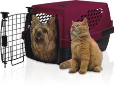 Nature's Miracle P-6014 Single Door Advanced Pet Suite with Odor Control Charcoal Filter, 19' >>> For more information, visit now : Furnitures that cats love