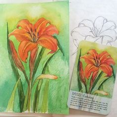 """Daylily original art for sale. Daylily is short-lived, each bloom fading after only a day. Her energy reminds you to live in the present, with a deep understanding that you cannot change things outside yourself. 💚  This is my signed original 6x9"""" pen and ink painting from my #soulflowerplantspiritoracle deck. I will cut a custom matte and it will come ready to frame at 11x14"""". Price is $100 + shipping.  If you would like to own the original please comment SOLD. I will then PM you for…"""
