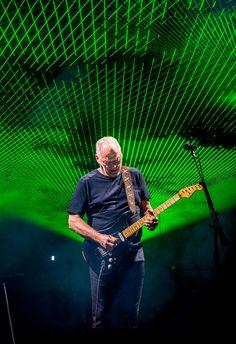David Gilmour at The Royal Albert Hall David Gilmour Pink Floyd, Bonnie Raitt, Chuck Berry, Stevie Ray Vaughan, Progressive Rock, Concert Photography, Rock Legends, Keith Richards, Aerosmith