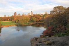 Wide Image Of Central Park photos, royalty-free images, graphics, vectors & videos | Adobe Stock