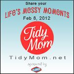 Life's Messy Moments with TidyMom