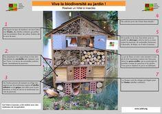 Un hôtel-abri pour les insectes au jardin
