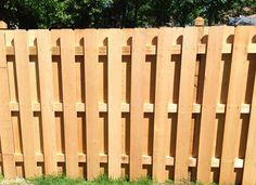[8a England] What can I grow to cover this kind of fence? Imagine this picture without the wooden backing. It's exposed to the side of my house. #gardening #garden #DIY #home #flowers #roses #nature #landscaping #horticulture
