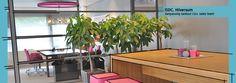 ISDC in Hilversum heeft een logo met roze en donkerrood, dat moest ook terugkomen bij de herinrichting van hun nieuwe interieur
