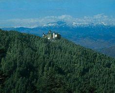 Wildflower Hall, Shimla in the Himalayas (26141844)