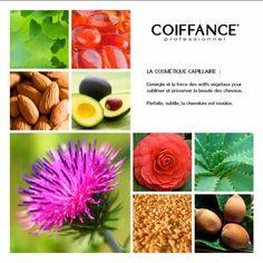 Coiffance: la cosmetica naturale. Estratti vegetali e naturali utilizzati per prendersi cura dei nostri capelli.