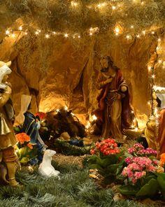 Presépio Natalino Christmas Home, Christmas Bulbs, Xmas, Christmas Ideas, Church Altar Decorations, Christmas Decorations, Jesus In A Manger, Nativity Stable, Wedding Boxes