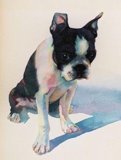 animals: Romeo.   Tracy Lewis