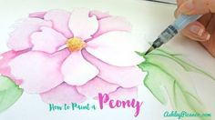how to paint a peony in #watercolor