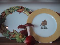 wood, forest , mushroom... dinnerplates