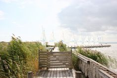 Brooklyn Bridge, Austria, Travel, Sunrise, Lighthouse, City, Autumn, Viajes, Destinations