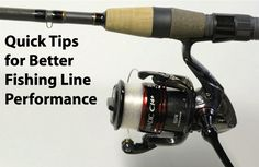 1000 images about drop a line on pinterest bass pro for Bass pro shop fishing line