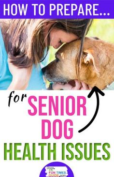 Senior Dog Health Issues: 8 Most Common Health Problems In Older Dogs (Preventatives & Solutions)Dog Age & Older Dog Health Issues - Have a senior dog? Here are the most common health problems in older dogs that you need to be aware of. How to prepare for your senior dog's final years. Plus, what you need to know about dog age and dog health.