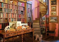 Books + spiral staircase + puppy = heaven
