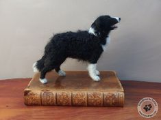Needle felted border collie - 12.5cm high - FeltedPaws by Tatiana