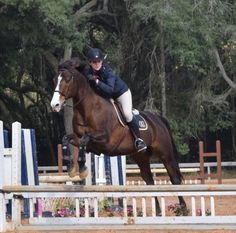 JMR Judge Rob Gage gives this jumper rider some position tips.