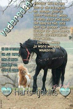 Vadersdag Birthday Qoutes, Love Quotes For Him Romantic, Fathers Day Quotes, Quote Of The Day, Words, Happy Father Day Quotes, Horse
