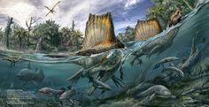 Spinosaurus aegyptiacus fue descubierto en 1912 y descrito como especie en 1915. Sin embargo, no ha sido hasta 2014 cuando se le ha considerado como el primer caso conocido de dinosaurio semiacuático.