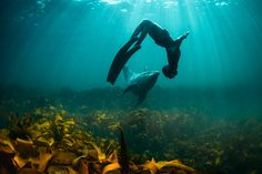 human underwater dolphin dance | George Karbus Photography