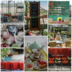 NOORDWIJK BUITEN : Kwekerij en theedrinkerij met speciale eetbare kruiden en bloemen die ook nog eens decoratief zijn.