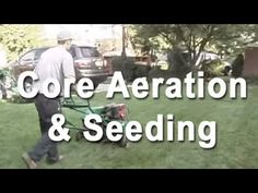 Core Aeration and Overseeding of a Healthy Lawn