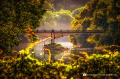 Conway Bridge Sunlight by April Bryant - Photo 143679123 - Slice Of Life, Photos Of The Week, Wonderful Places, Sunlight, Landscape Photography, Travel Photography, Places To See, Tourism, Bridge
