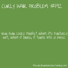 A huge, frizzy mess.think mushroom cloud. Curly Girl Problems, Curly Hair Styles, Natural Hair Styles, Hair Issues, Hair Quotes, Story Of My Life, Hair Looks, Memes, Naturally Curly