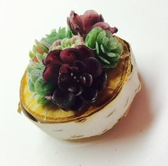 This sweet magnet was created by arranging colorful, miniature synthetic succulents on a beautiful, all natural birch slice. The succulents vary in color and size, giving this piece a natural look. Each succulent measures around an inch, give or take. The birch slice measures approximately 2.5 wide and the entire magnet is about 1.5 deep.  Attached to the back is a heavy-duty 1 round, ceramic magnet. The holding power of this magnet is strong and can be displayed on your fridge, your…