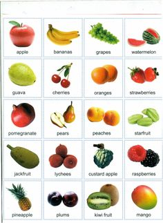 fruits with their names