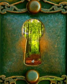 Behind this door is a magical forrest!  KG