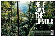 One of our 50th Anniversary #ads. It's possible that the #lipstick you love contains palm oil from unsustainable plantations, which often comes at the expense of tropical forests and the wildlife that lives in them. There is hope though, read more: http://wwf.panda.org/what_we_do/footprint/agriculture/palm_oil/ © Alain Compost / WWF-Canon