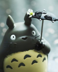 Oh Totoro! Spring time!