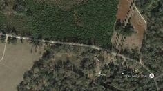 1,003 Acre Richland Plantation