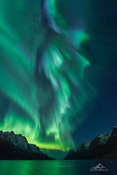 Amazing aurora at the beautiful fjord ersfjord in tromso norway stunning aurora borealis photos taken in norway Beautiful Sky, Beautiful Landscapes, Beautiful World, Beautiful Places, Tromso, Nature Pictures, Cool Pictures, Cool Photos, Aurora Borealis