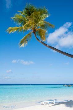 Vakarufalhi  Maledives Tropical Beaches, Time Out, Tropical Paradise, Maldives, Sweet Dreams, Palm Trees, Summertime, Wanderlust, Bucket