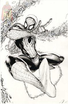 Spider-man by Philip Tan