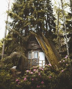 A-frame cabin hidden in the woods. Forest Cabin, Forest House, A Frame Cabin, A Frame House, Ideas De Cabina, Haus Am See, Cabin In The Woods, Cabins And Cottages, Interior Photo