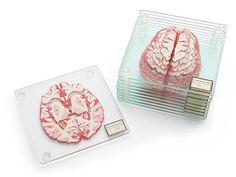 The Perfect Office - Brain Specimen Coasters, Dell UltraSharp U3415W and Office Ideas!