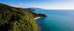 Daintree Discovery Center | The gateway do the daintree