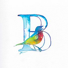 Bunting bird 🎨 #36days_b #36daysoftype @36daysoftype #illustration #handdrawn #bunting #bird #colourful #animal #draw #paint #watercolour #painting #melbourneartist #art #designspiration #thedesigntip #design #ink #type #typography #b #lettering #letters #handmadetype #goodtype #abc #abstract