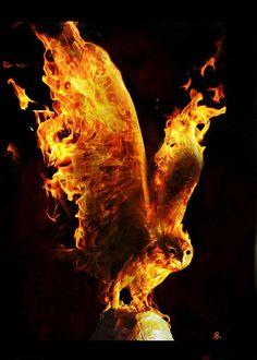 fire bird- this pose