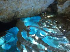 Aquarium, Fish, Pets, Amazing, Nature, Caves, Animals, Aquarius, Animals And Pets