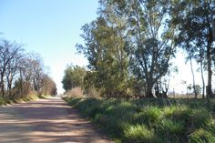 Fogón Rural  : EL TURISMO COMO ACTIVIDAD DE DESARROLLO DE COMUNID...