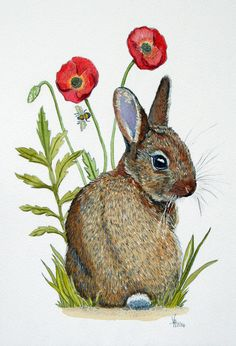 Realistic rabbit illustration - photo#10